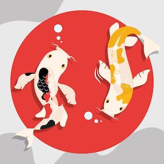 아름다운 잉어 물고기