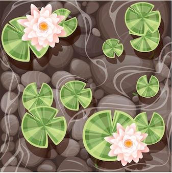 투명한 물과 돌 바닥 평평한 벡터 삽화에 녹색 잎이 있는 아름다운 백합 연꽃.