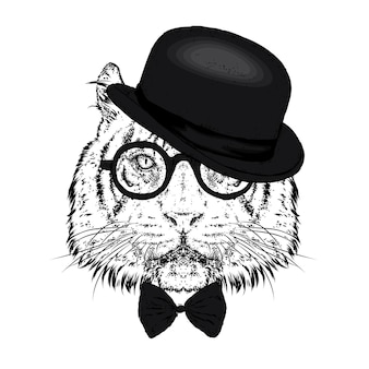 Beautiful lion in a hat