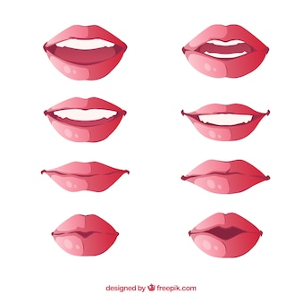 아름다운 입술 세트