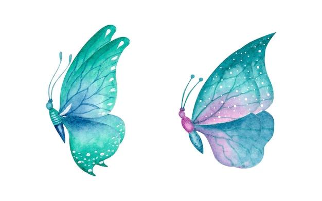 美しい素敵な手描きの水彩蝶セット