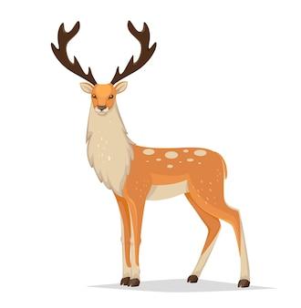 Beautiful male reindeer with big antlers
