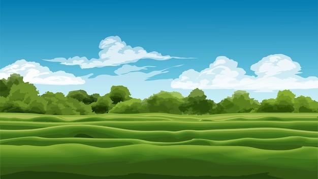 Красивый луг и лес в солнечный день