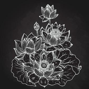 연꽃의 아름 다운 흑백 꽃 꽃다발