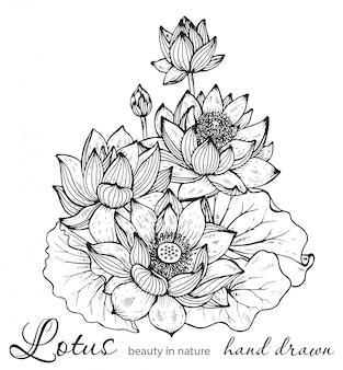 蓮の花の美しいモノクロ花の花束