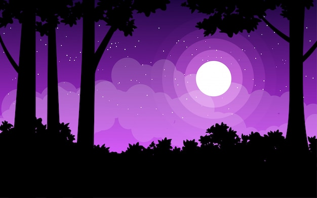 Beautiful night illustration with moonlight in forest