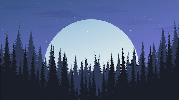 Красивый ночной сосновый лес с луной, пейзажный фон, вечерняя концепция