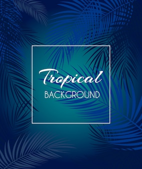 Beautiful palm leaf tropical background