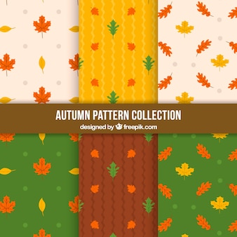 Beautiful patterns for autumn
