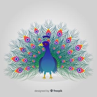 Красивый дизайн павлина