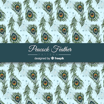 아름다운 공작 깃털 패턴 디자인