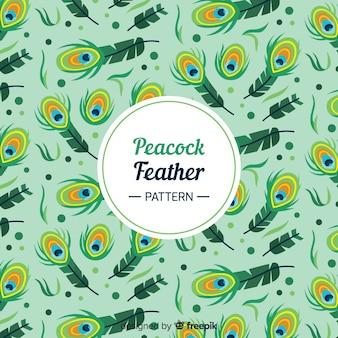 아름다운 공작 깃털 패턴