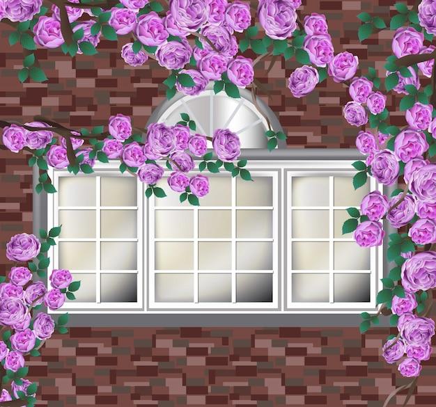 벽돌 벽에 아름 다운 모란입니다. 프로방스 스타일 배경
