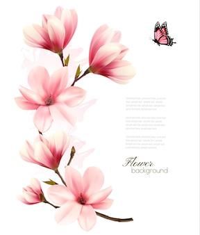 Красивый розовый фон магнолии. вектор.