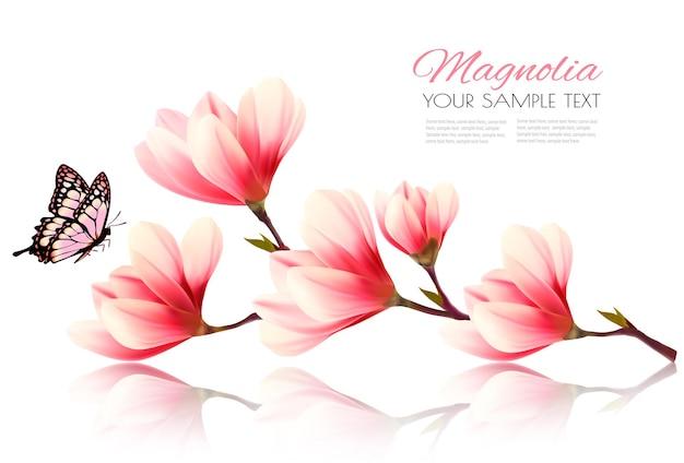 Красивый розовый фон магнолии с бабочкой. вектор.