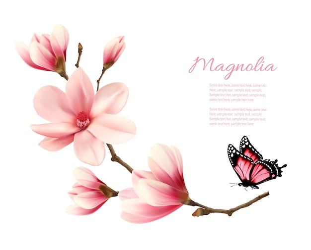 蝶と美しいピンクのマグノリアブランチ。ベクター。
