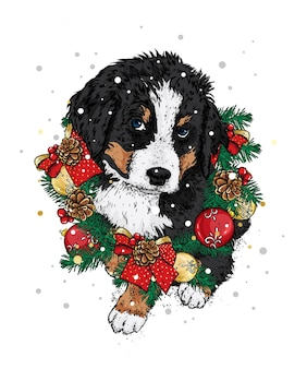 A beautiful puppy in a christmas wreath.  illustration.