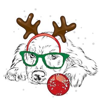 角のある美しい子犬。クリスマスとお正月。