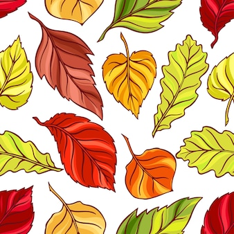 Beautiful seamless background of different autumn leaves. hand-drawn illustration