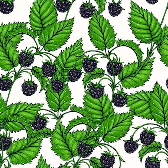 Beautiful seamless background with branches of delicious blackberry