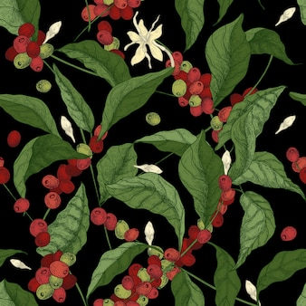 黒の背景にコーヒーやコーヒーの木の枝、葉、咲く花や果物と美しいシームレスパターン。ファブリックプリント、壁紙のアンティークスタイルのカラフルなイラスト。
