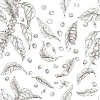 コーヒーの木の枝、葉、咲く花や果物と美しいシームレスパターン