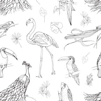 熱帯の鳥とエキゾチックな葉の美しいシームレスパターンは、白い背景の輪郭線で描かれた葉します。壁紙、生地印刷、包装紙の白黒イラスト。
