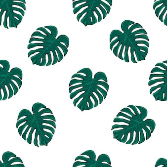 Beautiful seamless vector tropical pattern with monstera leaves on white background