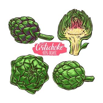 Beautiful set of different colorful artichokes. hand-drawn illustration