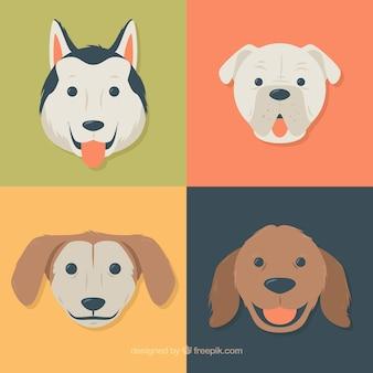 Красивый набор плоских собак