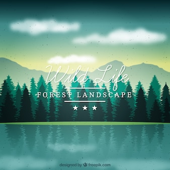 Beautiful skyline full pines background