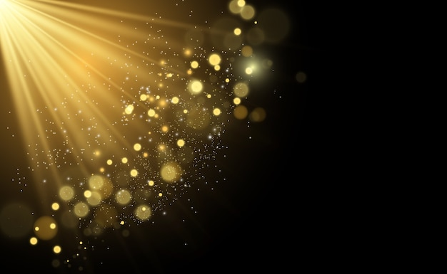 특별한 빛으로 아름다운 불꽃이 빛납니다. 반짝임.