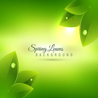 Beautiful spring season background