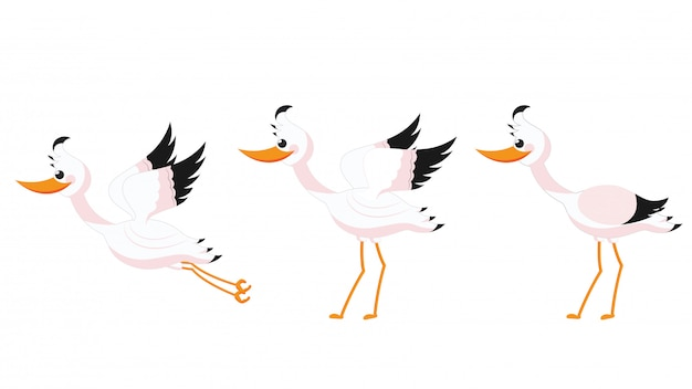 Beautiful stork set