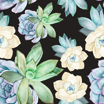 Красивый суккулент цветок акварель бесшовные модели