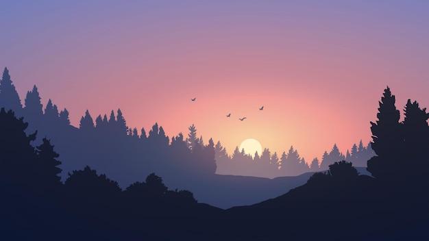 Красивый закат в лесу с силуэтом деревьев