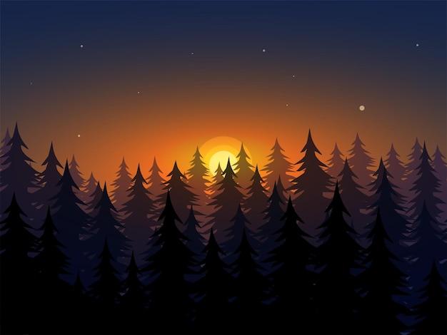 Красивый закат в лесу с деревьями в силуэте