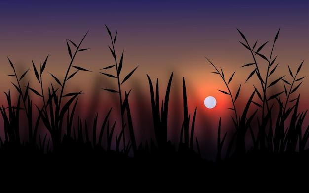 Красивый закат пейзаж с силуэтом травы