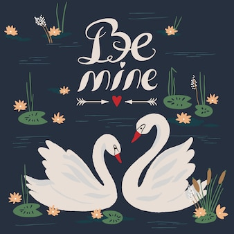 Beautiful swans on the lake. vector illustration