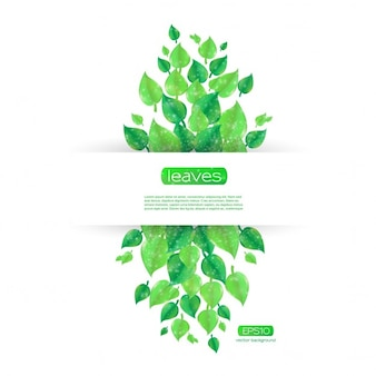 Beautiful template background with green leaves