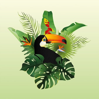 Beautiful toucan with decorative floral