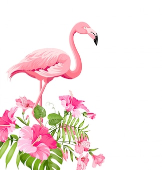 Beautiful tropical image with pink flamingo and plumeria flowers.