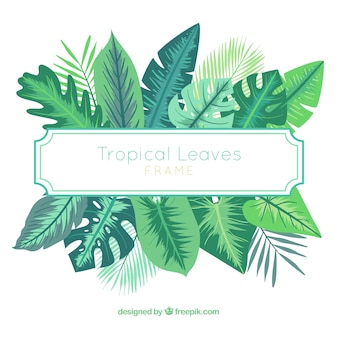 Beautiful tropical leaves frame