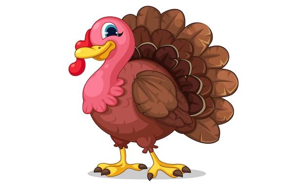 Beautiful turkey cartoon vector illustration