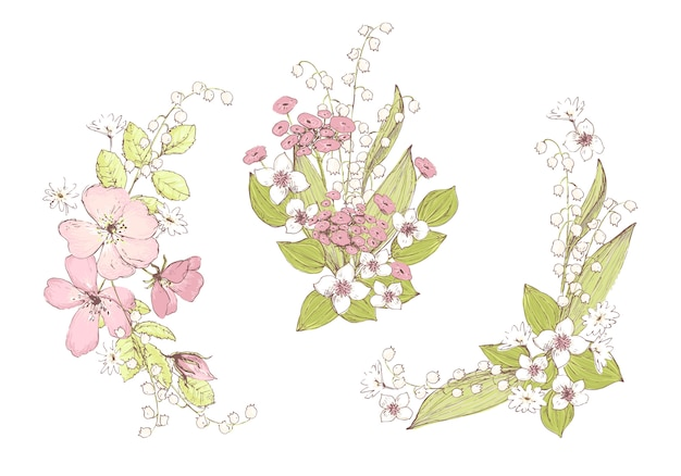 Beautiful vector bouquets, wild flowers. compositions for weddin