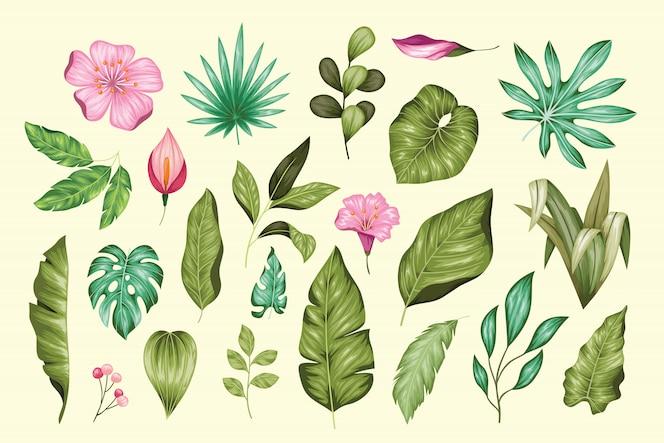 아름 다운 빈티지 손으로 그린 꽃 모음