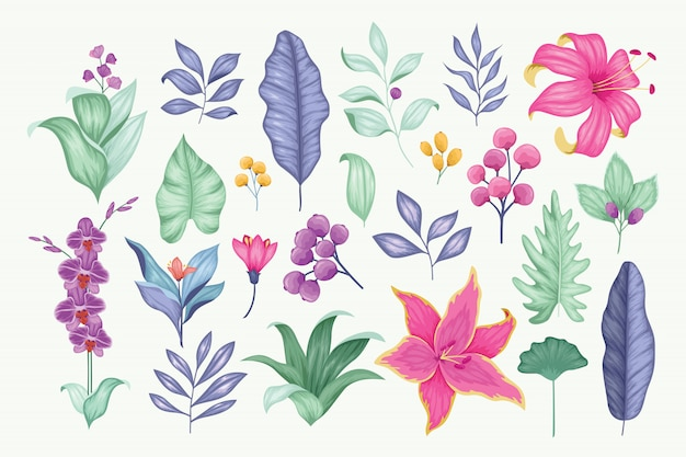 Beautiful vintage hand drawn floral vector collection