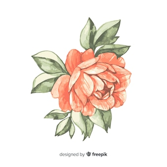 Beautiful watercolor coral flower