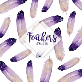 Beautiful Watercolor Feathers Background