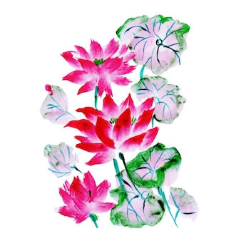 Beautiful watercolor floral element